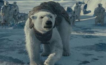 Top filme si seriale cu ursi polari
